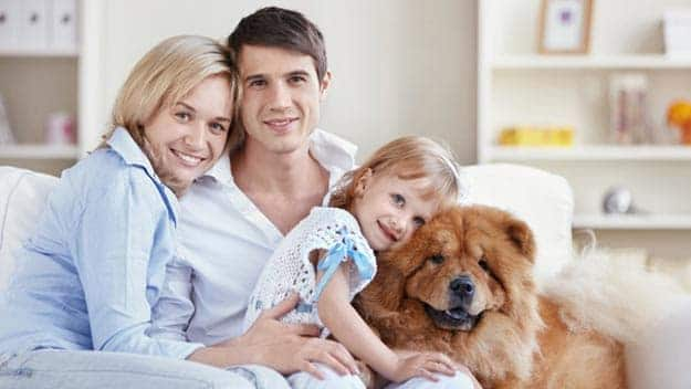 Wills & Trusts dog-young-family Direct Wills Leeds